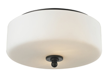 Z-Lite 414F2 - 2 Light Flush Mount